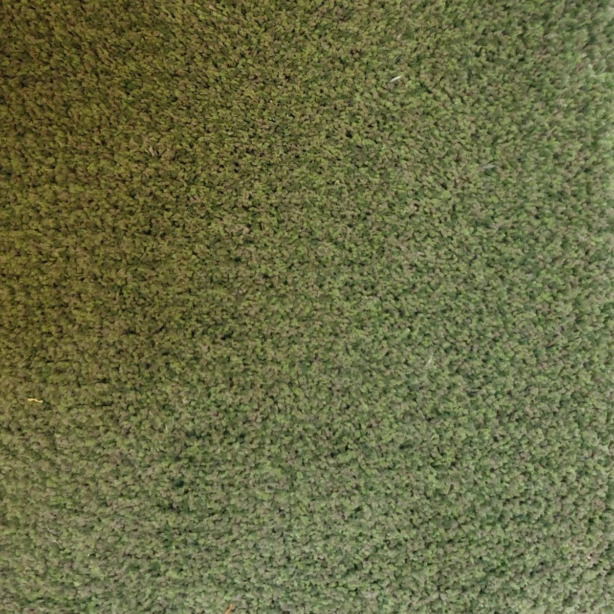 3802 432 1200x1200 - Van Besouw type 3802 kleur 432